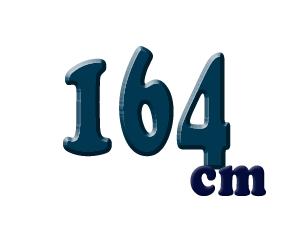164cm